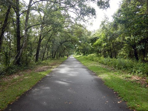 Withlacoochee Trail near Nobleton
